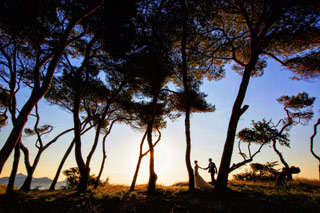 Hochzeitfotograf Mallorca