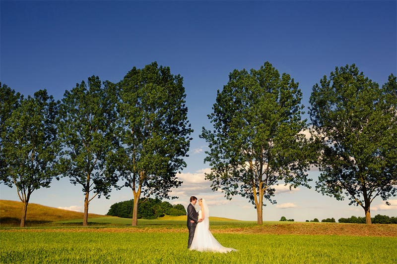Hochzeitsfotograf-Burg-Schlitz